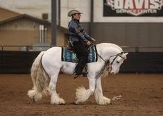 SD Iceman Owned by PSRanch Shown by Katie Hembree Sd, Serenity, Ranch, Peace, Horses, Animals, Guest Ranch, Animales, Animaux