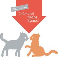 Weil man es nicht oft genug sagen kann: Katzen sind keine Einzelgänger, nur Einzeljäger. Deshalb sollten vor allem Wohnungskatzen nicht alleine leben müssen. Insbesondere Katzenbabies lieben es, mit ihresgleichen zu spielen!  http://katzentipps.ch/tipp-katzen-sind-keine-einzelgaenger/