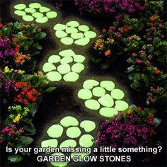 path with glow in the dark rocks - Google Search