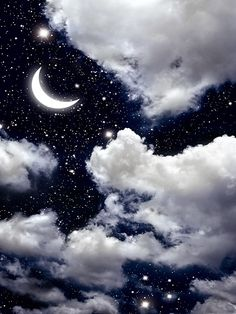 Printed Background Night Sky with Moon Backdrop Drop Photography Backd | DropPlace