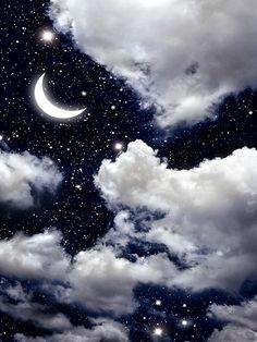 Night Sky / 1180