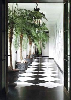 Tropical Chic interior decor with a touch of classical elemts