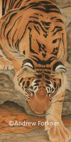 Sumatran Descent.