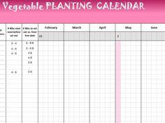 Carpool Scheduler Downloadable Template | An Organized ...