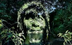 Using the Brazilian rainforest as a canvas, he wants to bring attention to this crisis with a dramatic call to action. Instead of putting his message on city walls and on subways, Echaroux has created Street Art 2.0 and is putting his message directly on the Amazon with light projections of the faces of the Surui people.