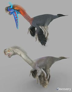 Gigantoraptors from DR 3 by Swordlord3d