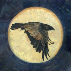 "Glorious Raven ""Moonshadow"", by Joyce Gibson"