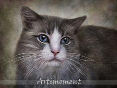 Custom Portrait Custom Pet Portrait Custom Cat by Artimoment