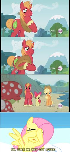 Hide Your Shame, Mac - Friendship is Magic Mlp My Little Pony, My Little Pony Friendship, Mlp Comics, Funny Comics, Mlp Pony, Pony Pony, Big Macintosh, Little Poni, Best Cartoons Ever
