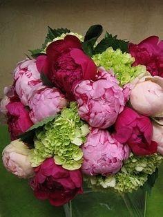 Peonies and Hydrangea - pretty bouquet Peonies And Hydrangeas, Pink Peonies, Peonies Bouquet, Green Hydrangea, Hydrangea Bouquet, Boquet, Ranunculus, Fresh Flowers, Beautiful Flowers