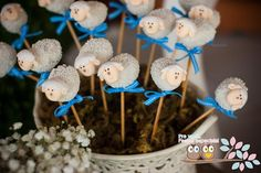Little Lamb cake pops, would be cute for Easter dinner via Kara's Party Ideas | Kara'sPartyIdeas.com