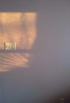 #sunlight #wall #morning #shine #morning