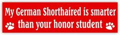 My German Shorthaired is smarter than your honor student bumper sticker 2-pack
