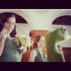 Geico online dating commercial lyrics i can bring
