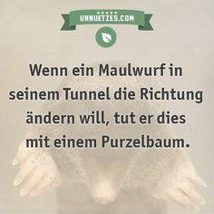 Wenn ein Maulwurf in seinem Tunnel die Richtung ändern will, tut er dies mit einem Purzelbaum.