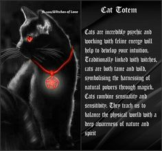 Black cats as power totem animals. Cat Spirit Animal, Animal Spirit Guides, Wicca Witchcraft, Wiccan, Power Animal, Spiritus, Animal Totems, Book Of Shadows, Cat Art