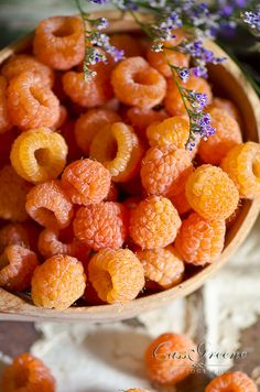 Yellow raspberries, so pretty. I wonder if they taste as good as the red ones! Eat Fruit, Fruit And Veg, Fruits And Vegetables, Fresh Fruit, Weird Fruit, Weird Food, Exotic Food, Exotic Fruit, Herbs