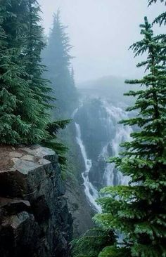 Image de nature, waterfall, and forest