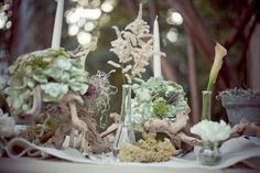 Eco wedding centerpieces!