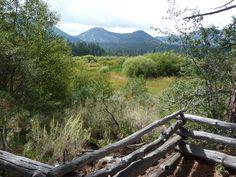 Taylor Creek Meadow, Lake Tahoe