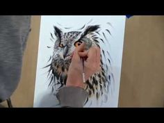 Long-eared Owl Drawing - Time Lapse video  #art #owl #drawing #timelapse #wildlifeart #owls #nature #beautiful