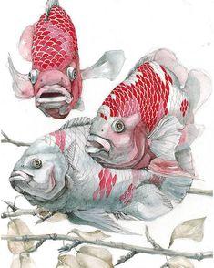 🎨 Watercoloris Fish Illustration, Watercolor Illustration, Watercolor Paintings, Illustrations, Watercolor Paper, Animal Sketches, Animal Drawings, Art Sketches, Fish Drawings