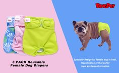 High Quality Pet Pee Pad Female Washable disposable Dog Diapers Dog Pee Pads, Female Dog In Heat, Female Dog Diapers, Pet Dogs, Pets, Litter Box, Pet Supplies, Puppies, Cubs