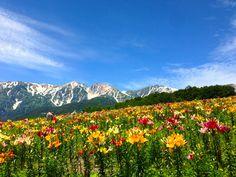 白馬岩岳 長野 Hakuba Iwatake in Nagano Prefecture
