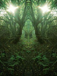 green symmetry