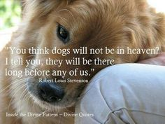 I believe pets go to heaven. I won't argue with u if u believe they don't, but please respect MY beliefs for they come from scriptural research (DEEP, consecrated research). The Bible isn't clear on this & points more at animals going to heaven. So I'll kindly walk away from u if u disagree with me & keep reading my Bible. Before u call me a blasphemer or scoffer, please know if I had to choose between a heaven with my pets or one with Jesus, I'd choose one with Jesus. HE is most important…