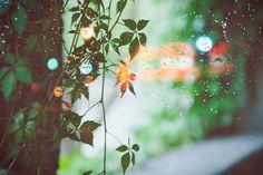 rain by ~Cvet04ek on deviantART