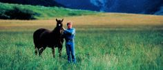 """""""the horse whisperer"""" - Google Search"""