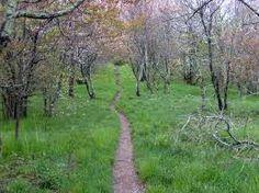Appalachian Trail...  Some day...