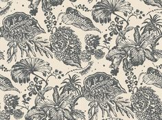 La Favourite (MLW2215-05) - Lorca Wallpapers - Exotic flora depicted in colour in a neutral background. Shown here in charcoal on cream. More colours are available. Please request a sample for true colour match. Wide width.