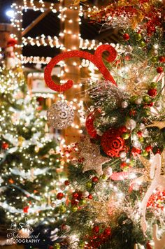 Amana Colonies, Iowa. #christmas #tannenbaumforest White Christmas, Christmas Wreaths, Christmas Tree, Amana Colonies, Iowa, Seasons, My Favorite Things, Amish, Holiday Decor