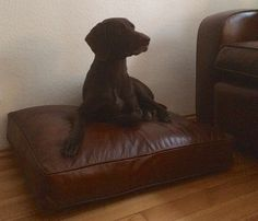 LCB made chair for the owner, cushion for the dog....