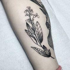 Black tattoo of a wildflower inked on the left calf Beautiful Flower Tattoos, Pretty Tattoos, Black Tattoo Art, Black Tattoos, Blackwork, Wildflower Tattoo, Subtle Tattoos, Small Plants, Picture Tattoos