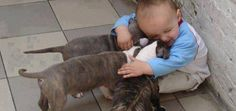 These 25 Pictures Show Why Every Baby Should Grow Up With A Pet…. Number 12 Will Melt Your Heart.