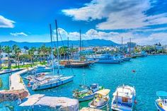 The port of Kos island. The main port of Kos island in Greece. Greece Kos, Greece Islands, Catamaran, Places To Travel, Places To See, Yacht Charter Greece, Greece Holiday, Boat Rental, Travel Magazines