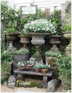 Garden urns vintage stone urns chelsea flower garden via isas tradgard containergardeningflowers for flower garden chocolate cosmos!
