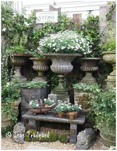 Shapiro's Garden: Isas Trädgård