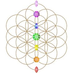 Flower of life with chakras