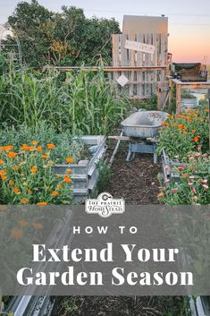 Garden Wallpaper How to Extend Your Garden Growing Season: Stretch your growing season with these simple garden techniques! These techniques are great for getting an early start to your spring garden. Diy Herb Garden, Herb Garden Design, Easy Garden, Garden Ideas, Garden Tools, Veg Garden, Garden Fun, Garden Pests, Green Garden