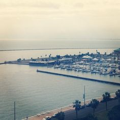 """@Lynn Ross's photo: """"Our view from our room #omniescape #vacation"""""""