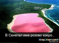 pinklake