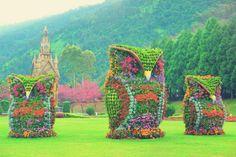 Owl art sculptures in Nantou County, Taiwan. #flowers #garden #travel