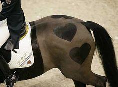 Equine hearts