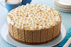S'mores Ice Cream Cake recipe - The ice cream inside the cake stays frozen while the s'mores topping toasts golden brown. Don't ask how—just say wow. #smores bake, food, ice cream cakes, summer bbq, yummi, sweet desserts, smore ice, cake recipes, birthday cakes