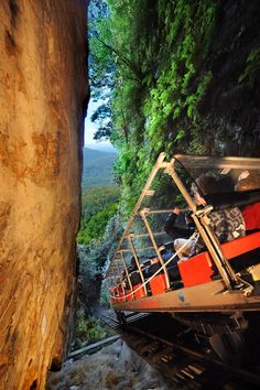 Scenic Railway, Steepest train in the World. Blue Mountains Australia.