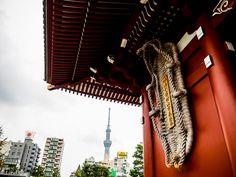 L3M1AS1 Part C - The Neighbourhood - Senso-ji Temple, Asakusa Tokyo - Exit Right - Photo 6a - Hand held Olympus OM-D EM-1 camera & Olympus M Zuiko Digitl ED 14-150mm F4-5.6 II lens. Setting: WB Auto; Metering Evaluative; ISO 250; Shutter 1/250s; Aperture f4 & Zoom 14mm.